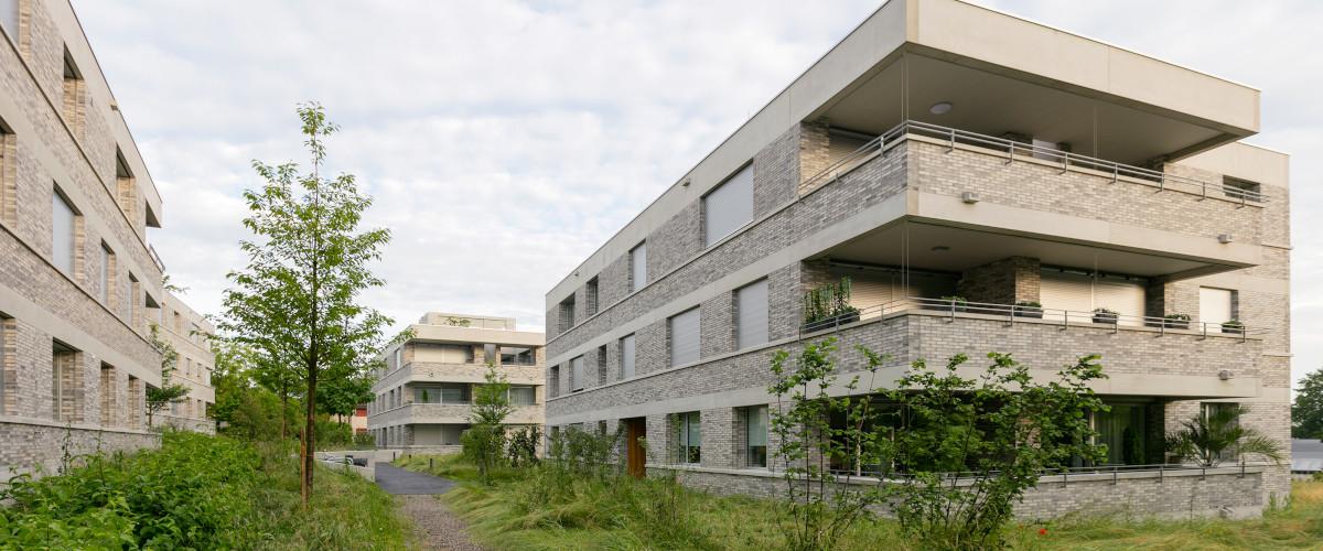 Im Kirschgarten 06, Müller&Naegelin Architekten, Foto © Julian Salinas